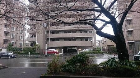 練馬区、中村橋・富士見台、サヤン鍼灸院・接骨院ブログ、3月21日雪