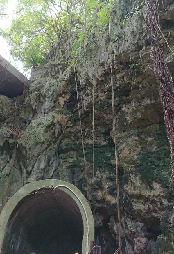 練馬区、中村橋・富士見台、サヤン鍼灸院・接骨院ブログ、ガンガラーの谷、谷の由来の洞窟出口