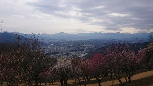練馬区、中村橋・富士見台、サヤン鍼灸院・接骨院ブログ、長瀞、宝登山、長瀞の景色1