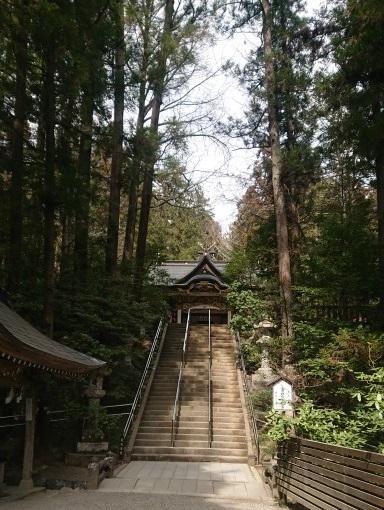 練馬区、中村橋・富士見台、サヤン鍼灸院・接骨院ブログ、宝登山神社階段