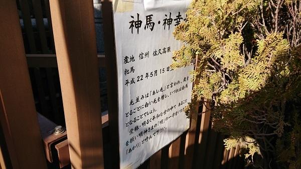 練馬区、中村橋・富士見台、サヤン鍼灸院・接骨院ブログ、神田明神、あかり看板