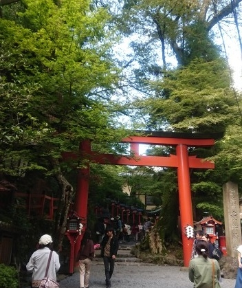 練馬区、中村橋・富士見台、サヤン鍼灸院・接骨院ブログ、貴船神社前