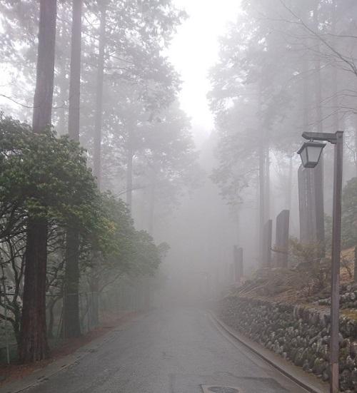 練馬区、中村橋・富士見台、サヤン鍼灸院・接骨院ブログ、秩父、三峰神社の参道途中