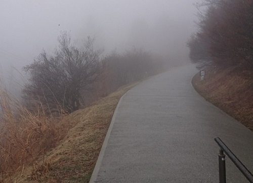 練馬区、中村橋・富士見台、サヤン鍼灸院・接骨院ブログ、秩父、三峰神社の参道