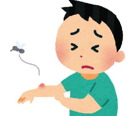 練馬区、中村橋・富士見台、サヤン鍼灸院・接骨院ブログ、蚊に刺される