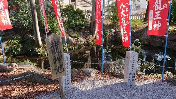練馬区、中村橋・富士見台、サヤン鍼灸院・接骨院ブログ、秩父今宮神社、龍神池
