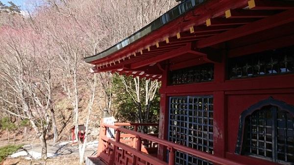 練馬区、中村橋・富士見台、サヤン鍼灸院・接骨院ブログ、中禅寺、立木観音を見た後