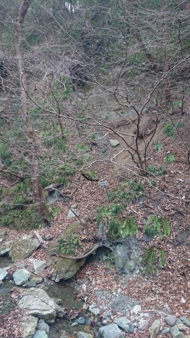 練馬区、中村橋・富士見台、サヤン鍼灸院・接骨院ブログ、和銅遺跡露天掘り跡